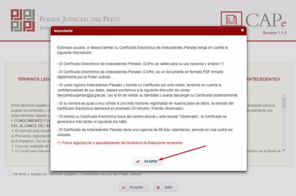 Paso 5 Cómo sacar antecedentes penales por internet